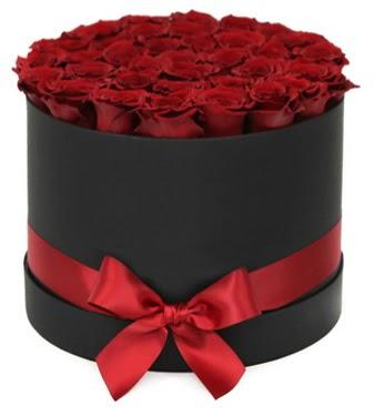 Siyah Kutuda 25 adet kırmızı gül  Ankara Anadolu çiçek gönderme sitemiz güvenlidir