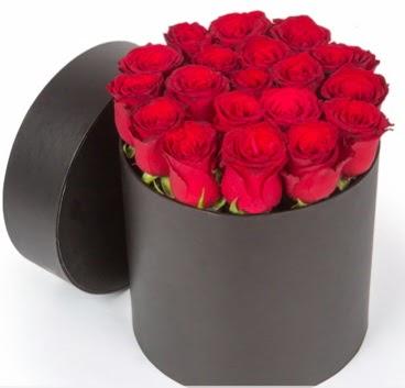 21 adet siyah kutuda kırmızı gül  Ankara Anadolu hediye çiçek yolla