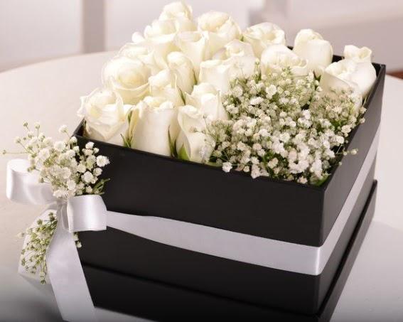 Kutu içerisinde 19 beyaz gül ve cipsofilya  Ankara Anadolu çiçek , çiçekçi , çiçekçilik