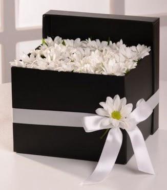 Kutuda beyaz krizantem papatya çiçekleri  Ankara Anadolu çiçek siparişi sitesi
