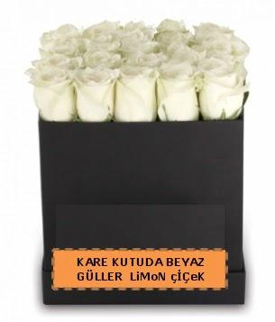 Kare kutuda 17 adet beyaz gül tanzimi  Ankara Anadolu çiçek siparişi sitesi