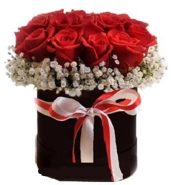 Siyah kutuda 23 adet kırmızı gül tanzimi  Ankara Anadolu çiçek gönderme sitemiz güvenlidir