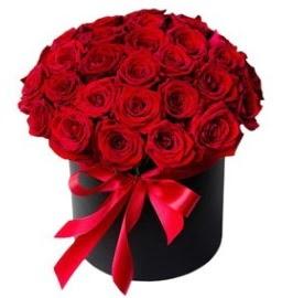 25 adet kırmızı gül kız isteme çiçeği  Ankara Anadolu internetten çiçek satışı