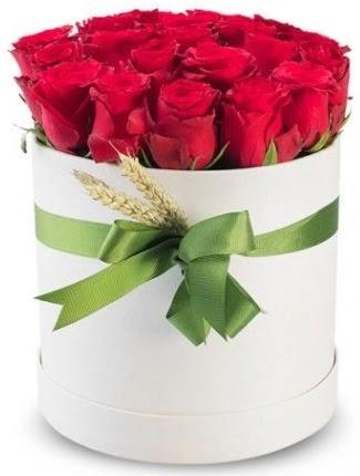 25 adet özel kutuda kırmızı gül  Ankara Anadolu cicekciler , cicek siparisi  söz çiçekler