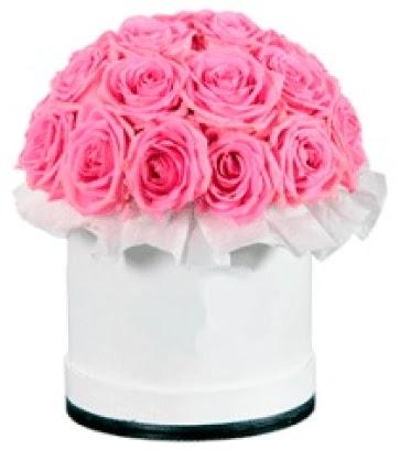 özel kutuda 20 adet pembe gül  Ankara Anadolu çiçek gönderme sitemiz güvenlidir