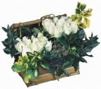 Ankara Anadolu çiçekçiler  13 adet sandikta beyaz gül