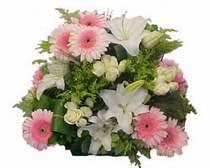 Ankara Anadolu kaliteli taze ve ucuz çiçekler  Gül kazablanka gerbera sepet çiçek modeli